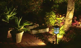 Outdoor lighting in garden